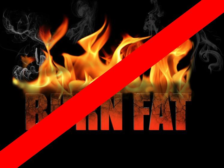 """Gordura vira músculo... ela não é simplesmente """"queimada""""! Veja aqui a explicação para o mito do fat-burner."""